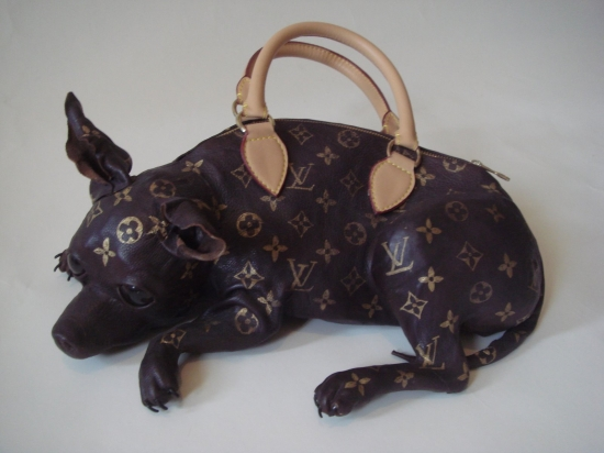 Chihuahua Luis Vuitton bag