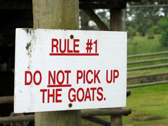 Do not pick up the goats