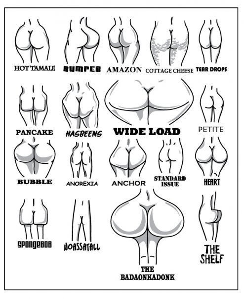 Types of women's behinds