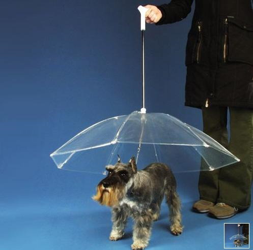 The Dogbrella-umbrella for dogs,funny images from HumorTechBlog.com