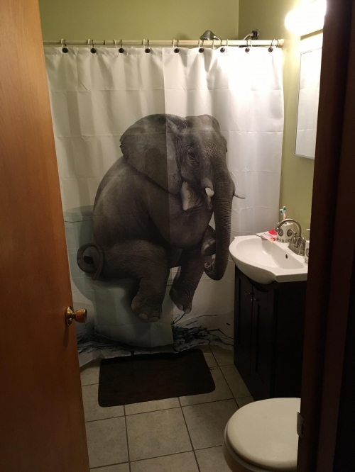 elephant on a toilet shower curtain