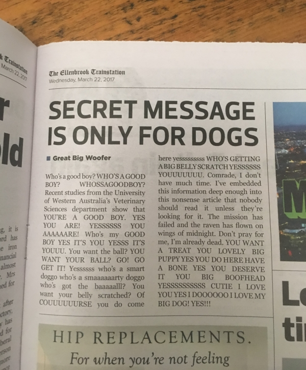 Secret Message Is Only For Dogs