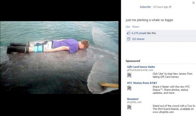 Whale planking