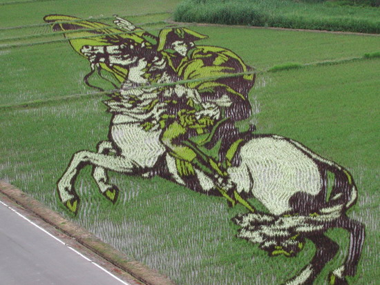 Napoleon Crossing the Alps - rice paddy crop art