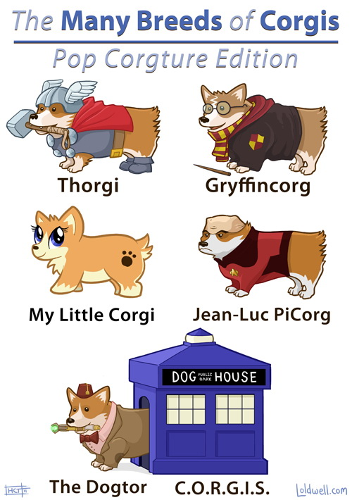 http://pics.blameitonthevoices.com/072011/the_many_breeds_of_corgis_-_pop_culture.jpg