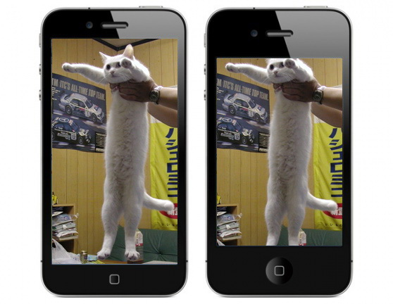 Longcat on iPhone 4 and iPhone 5