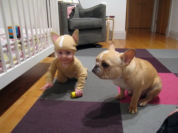 8-month-old Temma was dressed to match Louis the French Bulldog.  sc 1 st  Blame It On The Voices & Cute thing of the day: baby French Bulldog Halloween costume