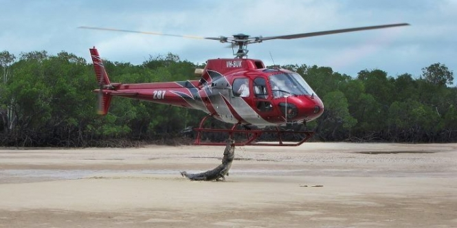 Crocodile bites helicopter