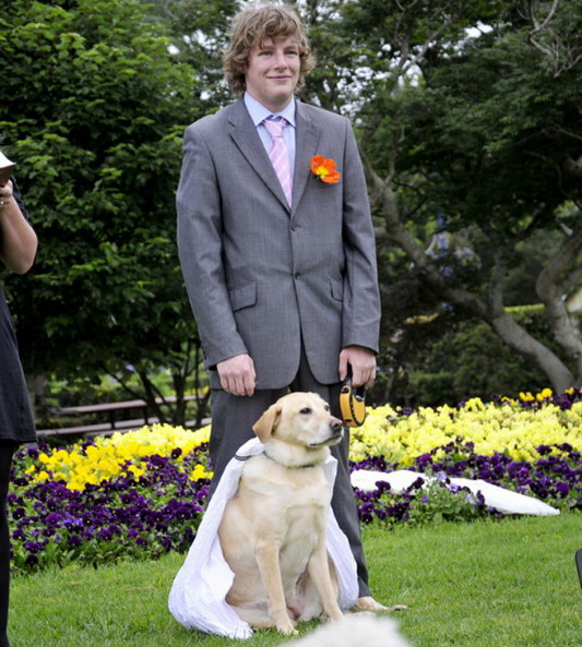 Man marries his dog man_marries_dog1