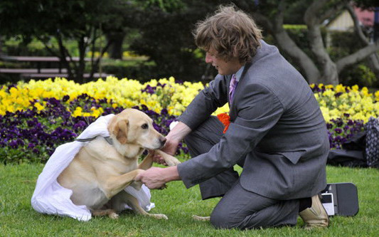 Man marries his dog man_marries_dog2
